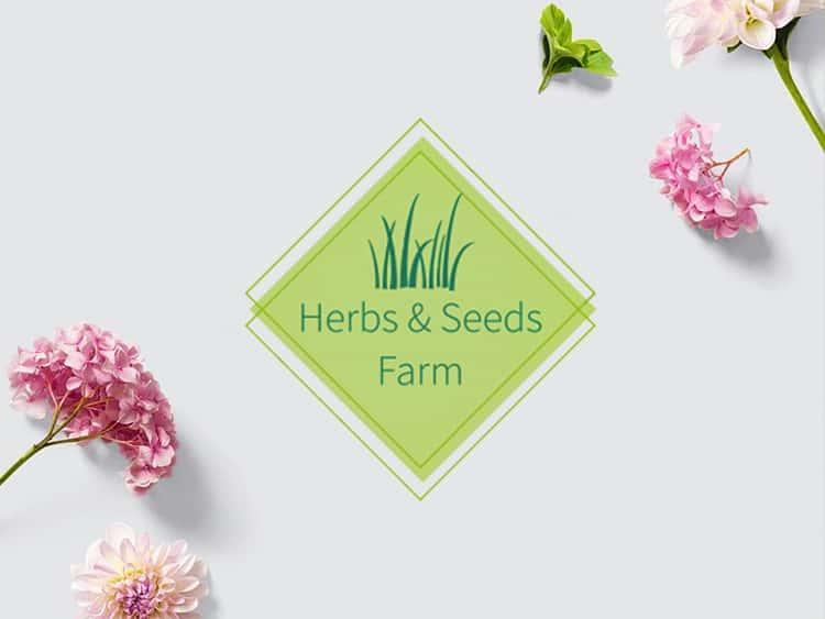 HS Farm - Projekt logotypu - Firma rolnicza