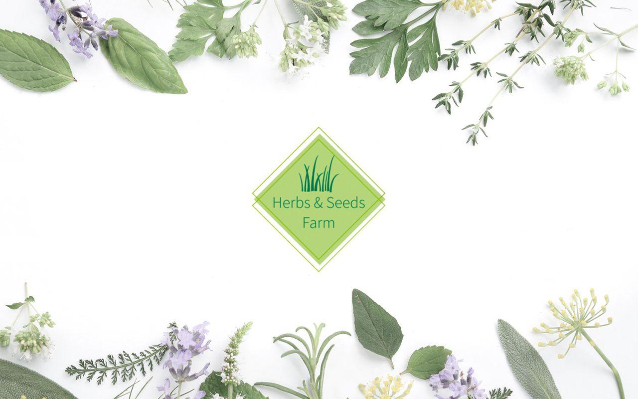 HS Farm - Zaprojektowane logo - Firma zielarskacza - Studio Viatas