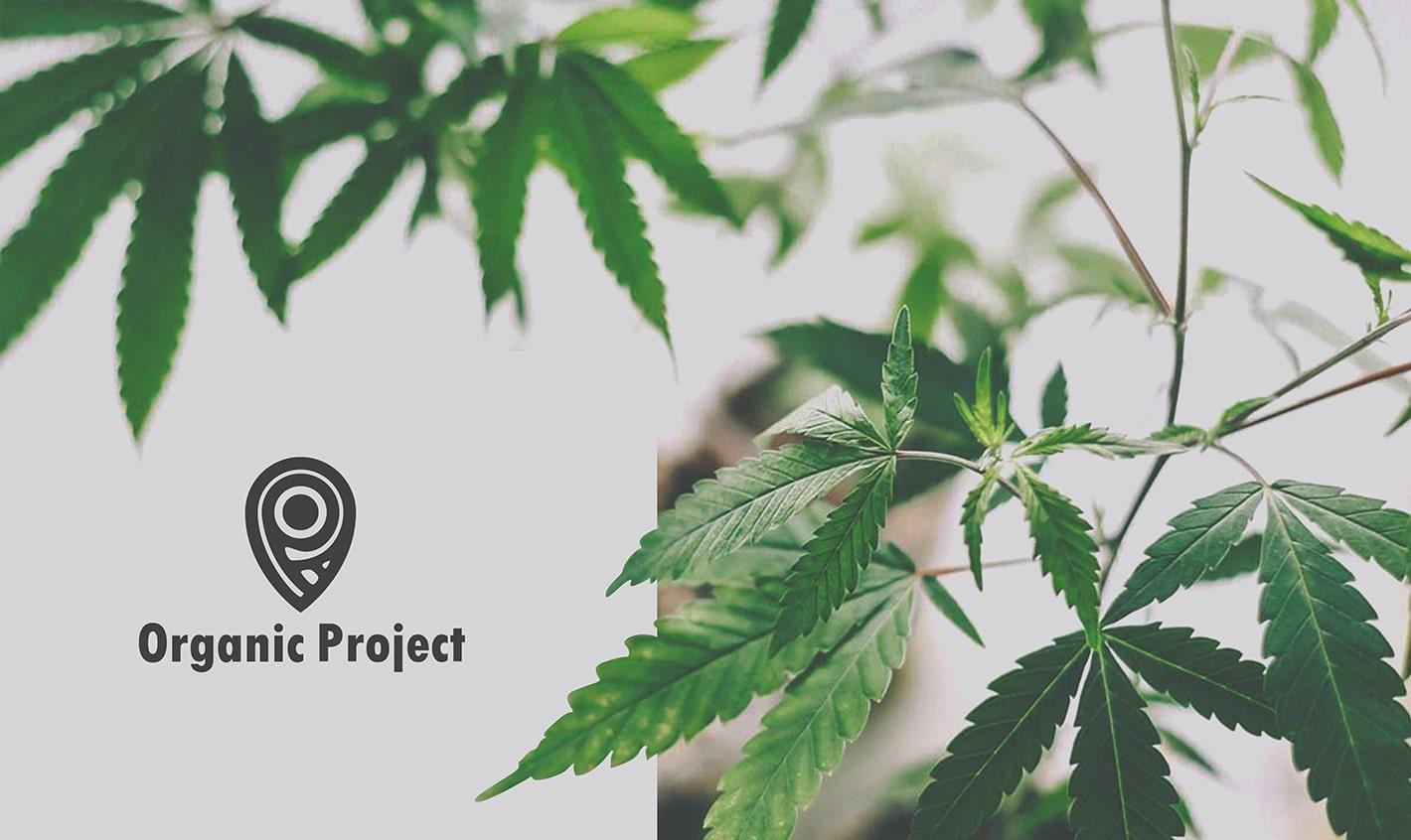 Organic Project - Efektowne logo kosmetyków i firmy kosmetycznej - VIATAS Design Studio